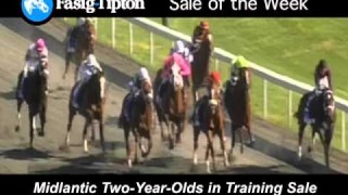 Sale of the Week: Midlantic 2YOs in Training!