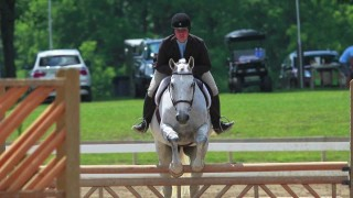 Horse Shows and Show Jumping