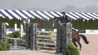 Hampton Classic 2013 Junior Jumper