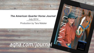 July 2014 American Quarter Horse Journal
