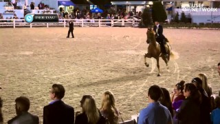 Five-Gaited Amateur Stakes