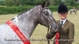 Alvechurch Riding Club Show