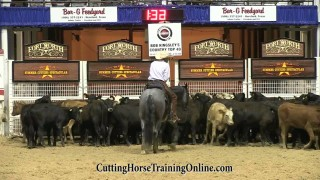 Once In A Blu Boon – NCHA Classic Challenge Champion