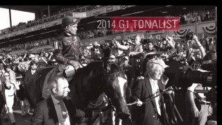 The Saratoga Sale 2014