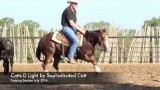 Catts D Light – Cutting Horse For Sale