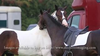 Alvechurch Riding Club Championship Show