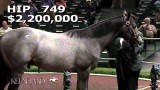Keeneland – Yearling Sale Wrap