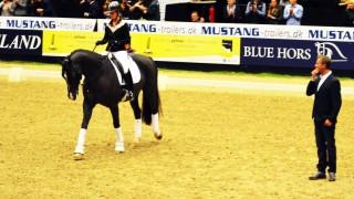 Valegro – Clinic JBK Horse Show