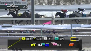Woodbine – Race 5 Nov. 21st Tbred