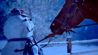 The Stagecoach & the Snowmen