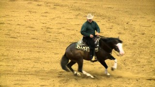 Spooks Gotta Whiz – Horse of Honor 2014