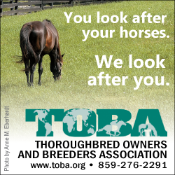 Become a member TOBA