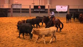Mercuria World Series of Cutting