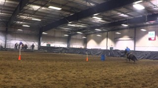 Mounted Shooting – Equine Expo