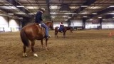 Jonathan Field Horsemanship Clinic