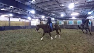 Rod Thiessen – Saskatchewan Equine Expo
