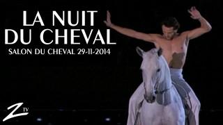 The Night of the Horse – Theatre Centauri
