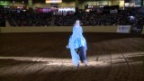 """Let it Go"" Wins World Freestyle Reining"