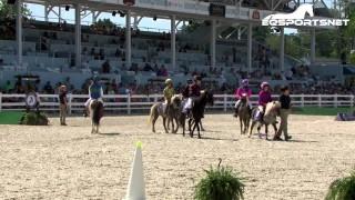 WIHS Shetland Pony Steeplechase