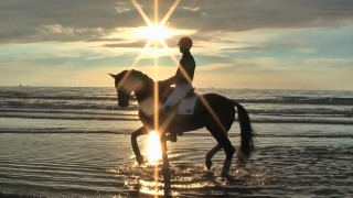 Dressage at the Beach