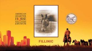 Fillinic