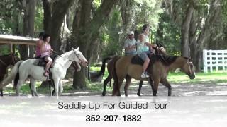 BG Trail Rides at the Florida Horse Park