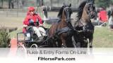 Drive-n-Dash – Florida Horse Park