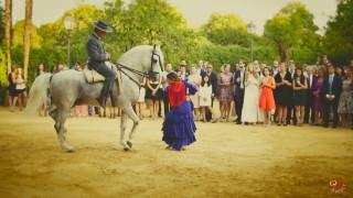 Equestrian Flamenco Show