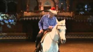 Arabian Nights Christmas Spectacular