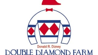 First Dude – Double Diamond Farm