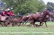 chuck-wagon-racing