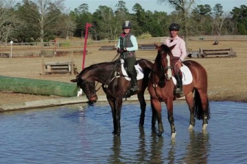 evention-tv-new-horse-to-water