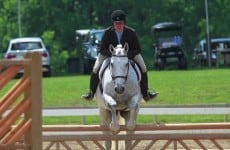 horse-shows-and-show-jumping