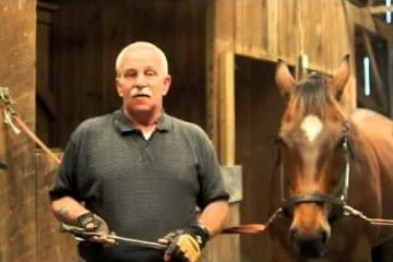 how-to-pull-a-loose-horse-shoe