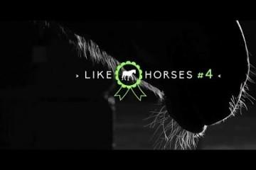 like-horses-episode-4