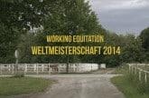 working-equitation-world-champio