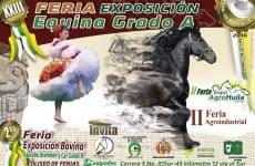 Afiche-exposicion-equina-grado-B-1024x704