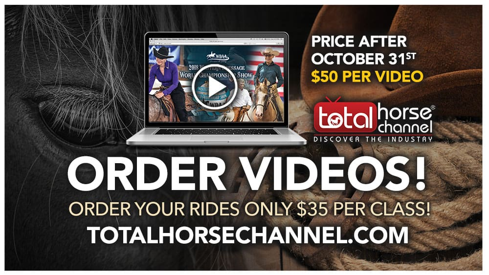 Total Horse Channel | Equestrian TV – Watch Horse videos, LIVE