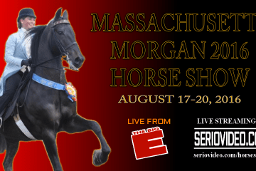 Thumb- AUG - Massachusetts Morgan Horse Show