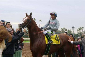 California Chrome Returns – San Diego Handicap