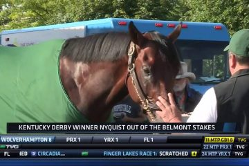 Nyquist to Miss Belmont Stakes